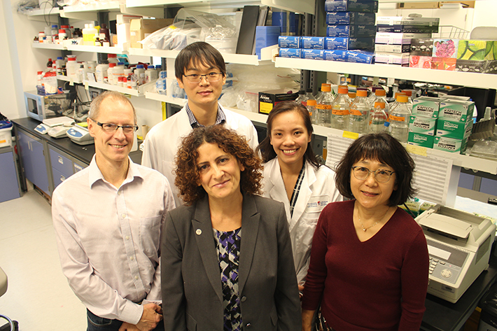 From left to right: Jacek Majewski, Rima Slim, Teruko Taketo, (front row) with ZhaoJia Ge and Ngoc Minh Phuong Nguyen (back row) in Dr. Slim's laboratory at the Research Institute of the McGill University Health Centre